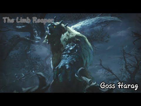 Monster Hunter Rise - Goss Harag Boss Fight #27